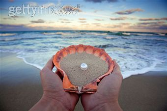 Sea shell and pearls with beach
